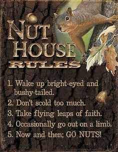 Tin Sign Squirrel Nut House Rules Go Nuts | eBay
