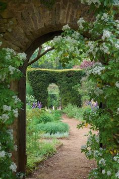 English country garden.  I love the arches.  Would have loved playing out there as a child.