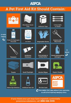 September is Disaster Preparedness Month. Make sure you have everything you need in case of a life-threatening emergency! To help you create your home's prep kit, the ASPCA Animal Poison Control Cen Emergency Preparedness Kit, Survival Prepping, Survival Supplies, Survival Skills, Dog Safety, Dog Care Tips, Pet Tips, Pet Safe, Pet Health