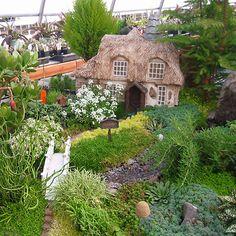 Mustard Seed Cottage Garden