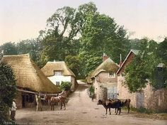 Here for your browsing pleasure is a majestic photo of Cockington Forge, Torquay, England.  This color photochrome print was made between 1890 and 1900 in Torquay, England.