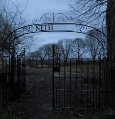 Abandoned Netherne Asylum cemetery, Surrey, England. Pic by D.A. Gregory