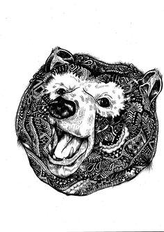 bear illustration