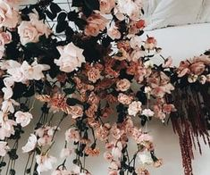 Flowers - Beautiful flowers for all occasions on We Heart It Flowers Nature, Beautiful Flowers, Pink Flowers, Pink Roses, Arte Dope, Plants Are Friends, Imagenes My Little Pony, Planting Flowers, Flowers Garden