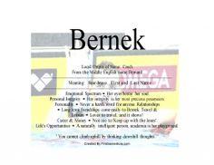 Bernek name means bear brave -Firstnamestore.com