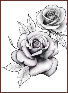 , Flores , Flores , A imagem pode conter: flor e planta 3 rose forearm tattoo Rose Drawing Tattoo, Tattoo Design Drawings, Tattoo Sketches, Watercolor Tattoo, Rose Flower Tattoos, Rose Tattoos For Men, Tattoo Flowers, Little Rose Tattoos, Floral Tattoo Design