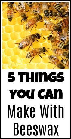 5 Things You Can Make With Beeswax - Organic Palace Queen Beeswax Recipes, Honey Bottles, Beeswax Food Wrap, Mint Tins, Honey Recipes, Herbal Remedies, Natural Remedies, Bee Keeping, 5 Things
