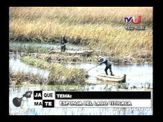 Entrevista al Dr. Enrique Richard sobre las esponjas del Titicaca  y  lo...