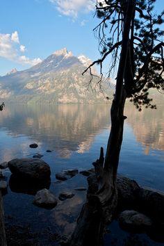 Grand Teton National Park. Moose, Wyoming. Go Camping, Outdoor Camping, Grand Teton National Park, National Parks, Beautiful World, Beautiful Places, Stunningly Beautiful, Places To Travel, Places To See