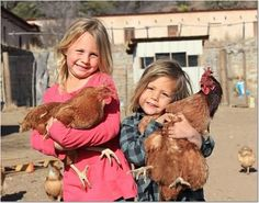 Image result for girls with chickens