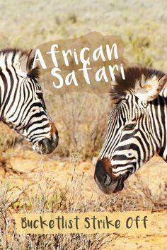 Bucketlist Strike Off – African Safari with the Big 5 | Travel on the Brain