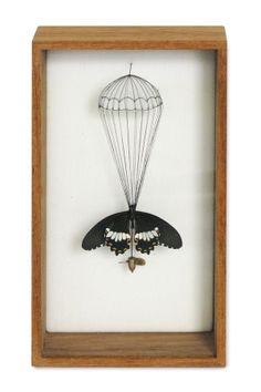 """Broken butterflies"" by Anne ten Donkelaar, via Behance"