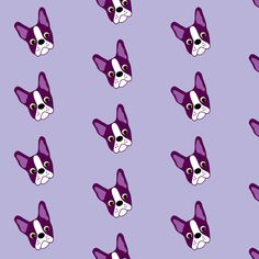 Puppy Passion The Purple Boston Terrier Fabric By Missyq On Spoonflower