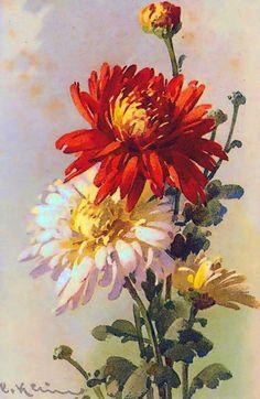 К. Кляйн. 15. Хризантемы.