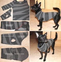 DIY Dog Coat Pattern Quick and Easy Project Video TutorialYou can find Dog coats and more on our website.DIY Dog Coat Pattern Quick and Easy Project Video Tutorial Pet Sweaters, Recycled Sweaters, Recycled Clothing, Recycled Fashion, Diy Pour Chien, Cat Tent, Dog Jumpers, Animal Pillows, Dog Shirt