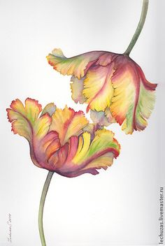 Touch. Tulips. Traditional art ( watercolor). Prof. paper: Canson 300 g/м2 (cotton). Svetlana Markina (LechuzaS) Size: 20cm*35cm