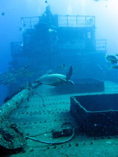 Wreck diving in Oahu.