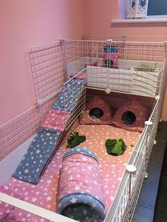 Fleece C&C Guinea Pig cage set up Diy Guinea Pig Cage, Guinea Pig Care, Guinea Pig Hutch, Guinea Pig Toys, Hedgehog Cage, Hedgehog Pet, Pig Habitat, Guinie Pig, Bunny Cages