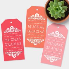 """New! """"Muchas Gracias"""" tags in beautiful desert sunset colors."""