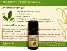 huile essentielle ravintsara - Recherche Google Skin Food, Shampoo, Personal Care, Bottle, Recherche Google, Essential Oils Guide, Natural Medicine, Self Care, Personal Hygiene