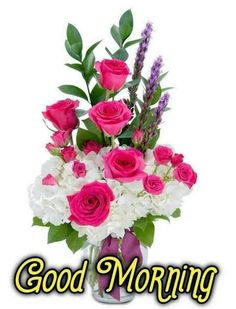 Good Morning Images For Whatsapp Latest Good Morning Images, Good Morning Beautiful Pictures, Beautiful Morning Messages, Good Morning Images Flowers, Good Morning Gif, Good Morning Picture, Good Morning Greetings, Morning Pictures, Morning Msg