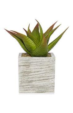 Planta de hojas grandes artificial