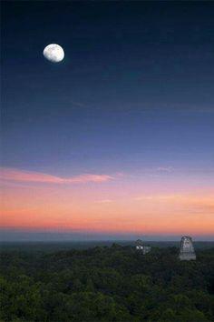 Mundo Maya - Tikal - Guatemala