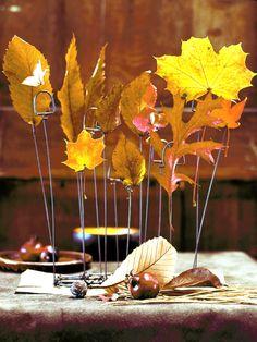Bei dieser schönen Herbstdeko wird der Postkartenhalter zweckentfremdet. Hierfür kommen Blätter von Eiche, Ulme und Ahorn zu neuen Ehren und werden zwischen...