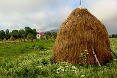 Newly made haystack frames huge garden at a farm in Breb, Maramures, in Romania