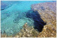 수돗물처럼 맑은 깊은 바다