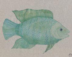 Turquoise Fish watercolor painting art print nautical Painting Art, Watercolor Paintings, Watercolor Fish, Nautical Art, Fish Print, Pigment Ink, Ocean Life, Art Market, Fine Art Paper