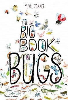 The Big Book of Bugs by Yuval Zommer http://smile.amazon.com/dp/0500650675/ref=cm_sw_r_pi_dp_uYUfxb0YD9R3J