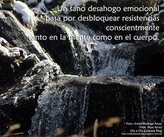De Ola a Ola Caracola Blog Blog, Movie Posters, Movies, Frases, Emotional Intelligence, Tips, Films, Film Poster, Blogging