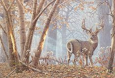 Broken Solitude- whitetail deer painting by Larry Zach Hirsch Wallpaper, Deer Wallpaper, Wildlife Paintings, Wildlife Art, Animal Paintings, Wild Life, Whitetail Deer Pictures, Deer Pics, Deer Drawing