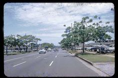 Kapiolani Boulevard, Honolulu, Hawaii 1954. A friend sent me a similar picture which was the first photo I saw taken in Hawaii