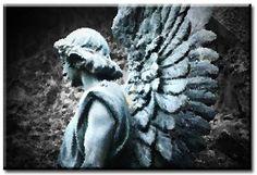 La terre est au soleil ce que l'homme est à l'ange.  Victor Hugo