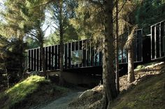 Clancy Moore Architects