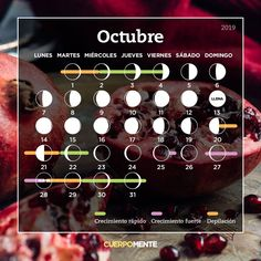 Calendario lunar de octubre Moon Calendar, Book Of Shadows, My Hair, Facts, This Or That Questions, Instagram Posts, Makeup, Laser, Reiki