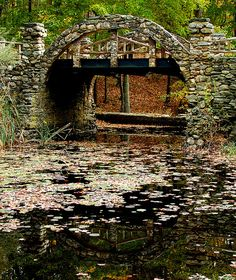 Mystic, Connecticut Pond :)