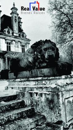 #Estatue #Lion #OldHouse #RealValue