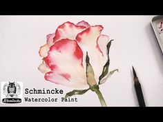 How to paint a rose in watercolor | Painting with Schmincke watercolor set - YouTube