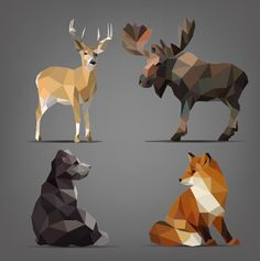 Find Isolated Set Wild Animals Geometric Style stock images in HD and millions of other royalty-free stock photos, illustrations and vectors in the Shutterstock collection. Thousands of new, high-quality pictures added every day. Geometric Wolf, Geometric Symbols, Geometric Shapes, Origami, Bear Images, Polygon Art, Shape Art, Vector Graphics, Animal Drawings