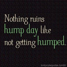 Nothing ruins hump day like not getting humped. ~k/cq~