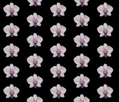 Orchid, black fabric by interrobangart on Spoonflower - custom fabric
