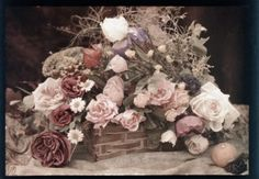 Composition florale. Autochrome 13 x 18 cm. - Antiq Photo - Photographies - [( 04. Autochromes|supprimer_numero)] - Achat, vente et estimati...