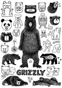 Grizzly by Brandt Botes