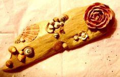 Driftwood and seashells from my beach walks