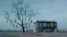 The Weeping Meadow by Theo Angelopoulos
