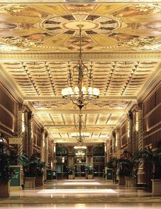 The Millennium Biltmore hotel in Los Angeles. Central California, California Dreamin', La Prohibition, York Hotels, Biltmore Estate, City Of Angels, Places To See, Around The Worlds, Fun Travel
