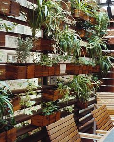 privacy wall  // Great Gardens & Ideas // Might be the solution to the high wall I need on my future deck, to get some privacy from the apt building beside me!  love the wood